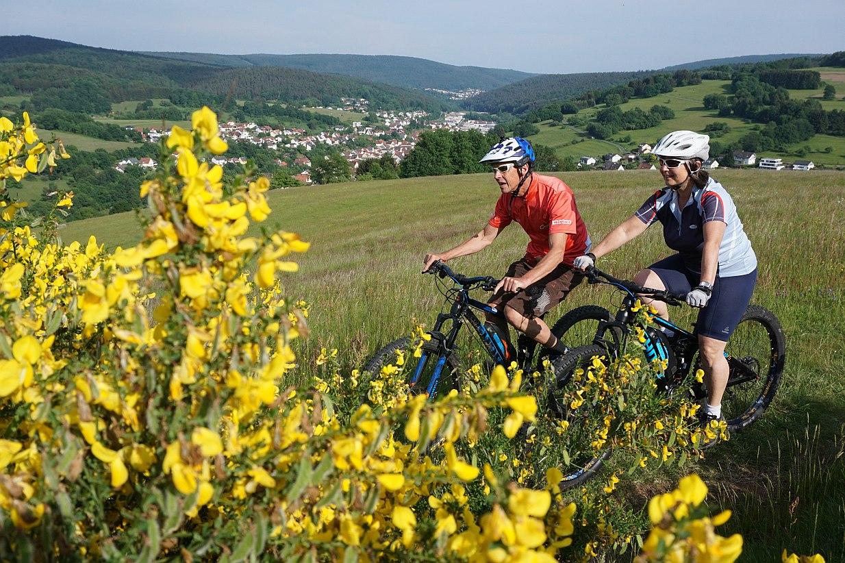 Bikewald Spessart R4