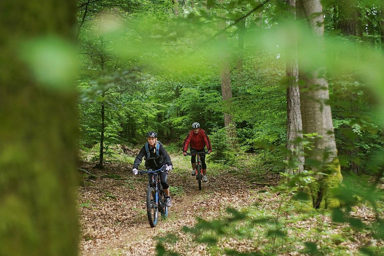 Bikewald Spessart R5