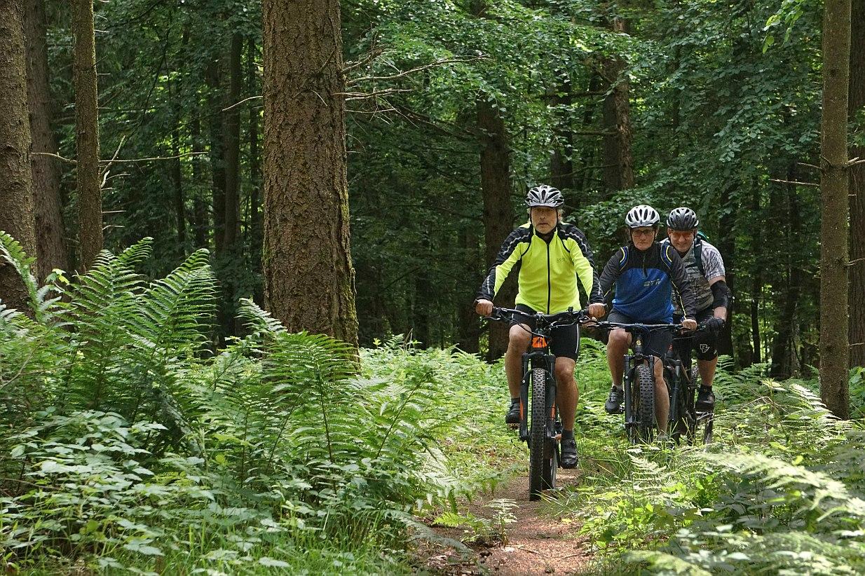 Bikewald Spessart R6