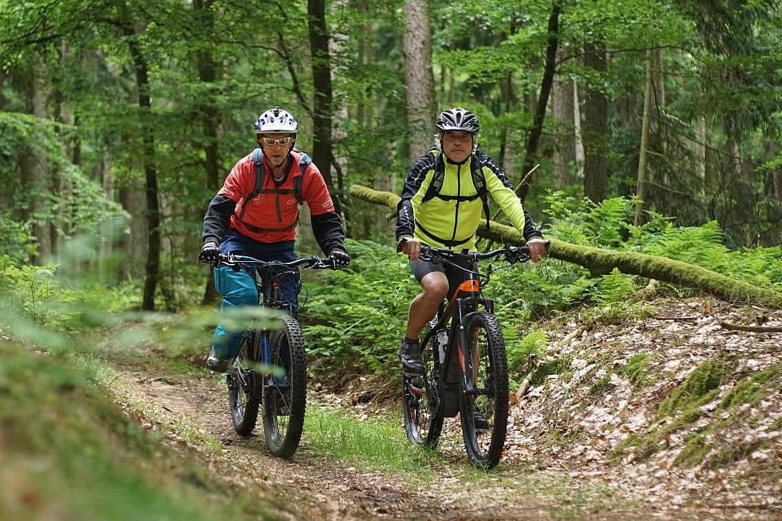 Bikewald Spessart R7